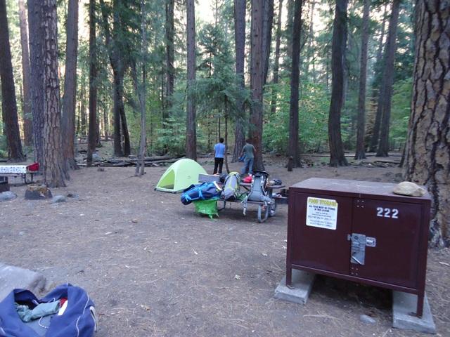 Cajas metálicas anti-osos para guardar la comida en el camping